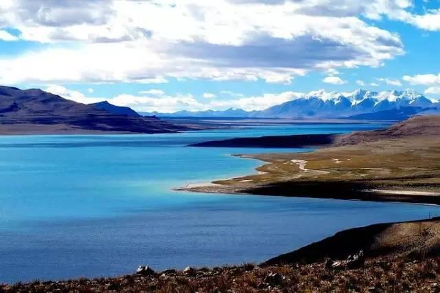 想找个男朋友,陪我去西藏