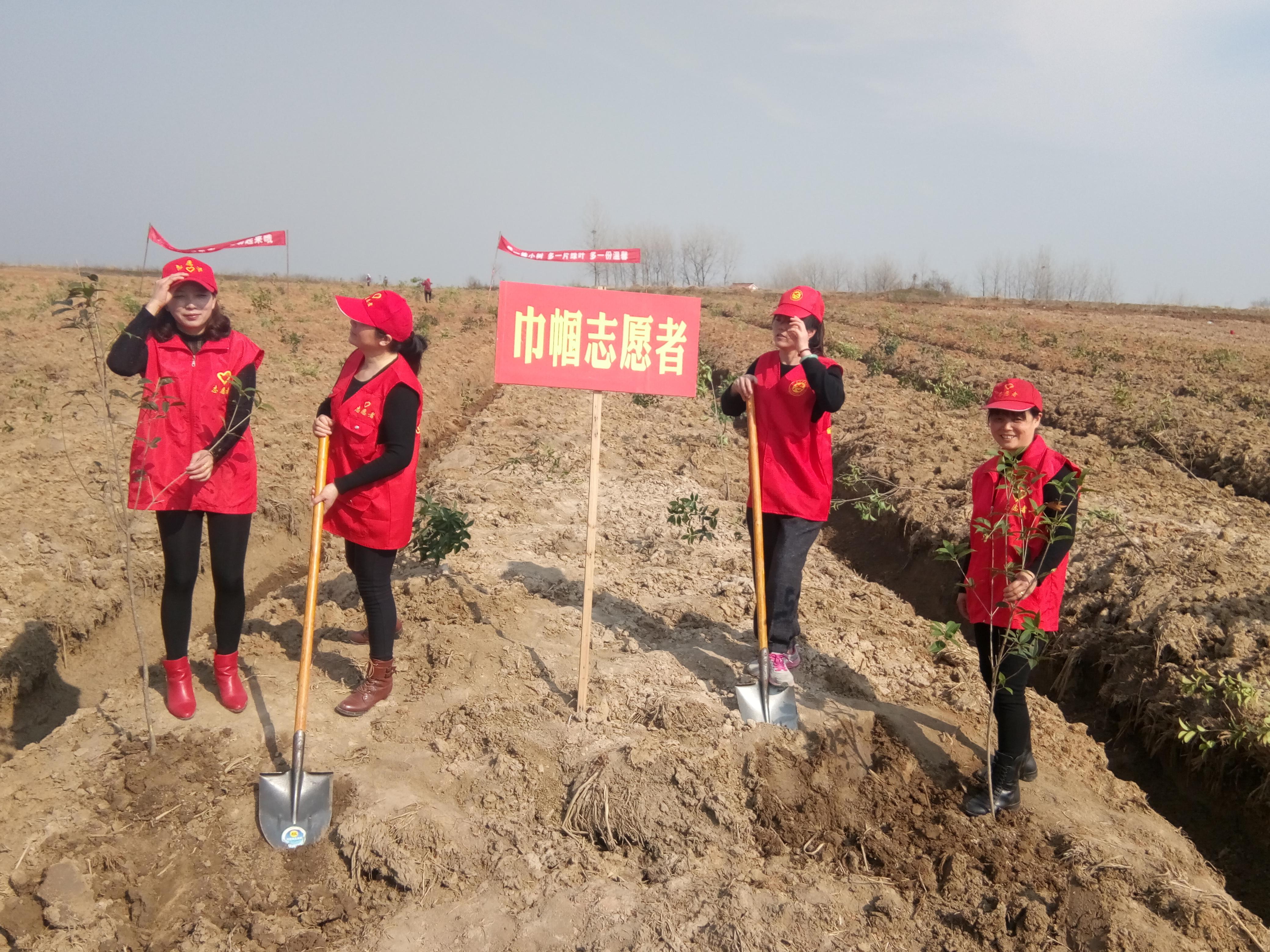 天长市新街镇文化全民健身志愿者积极参与植树活动