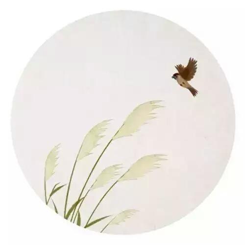 人生一世,草木一秋 美由善心来,心自莲花开