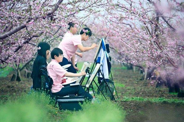 好消息!空港新城首届杏花摄影旅游节要开幕啦 - 视点阿东 - 视点阿东