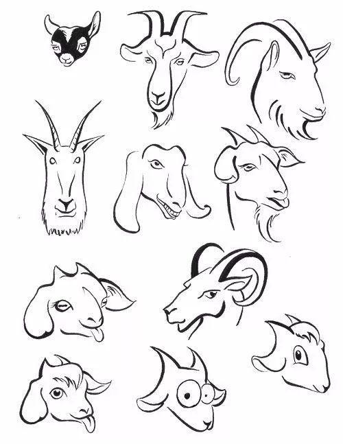 11· 猪的简笔画 ·