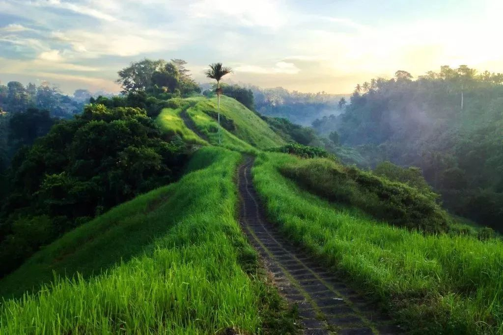 巴厘这个文艺十足的小镇,凭什么当选LP亚洲最受欢迎旅行地