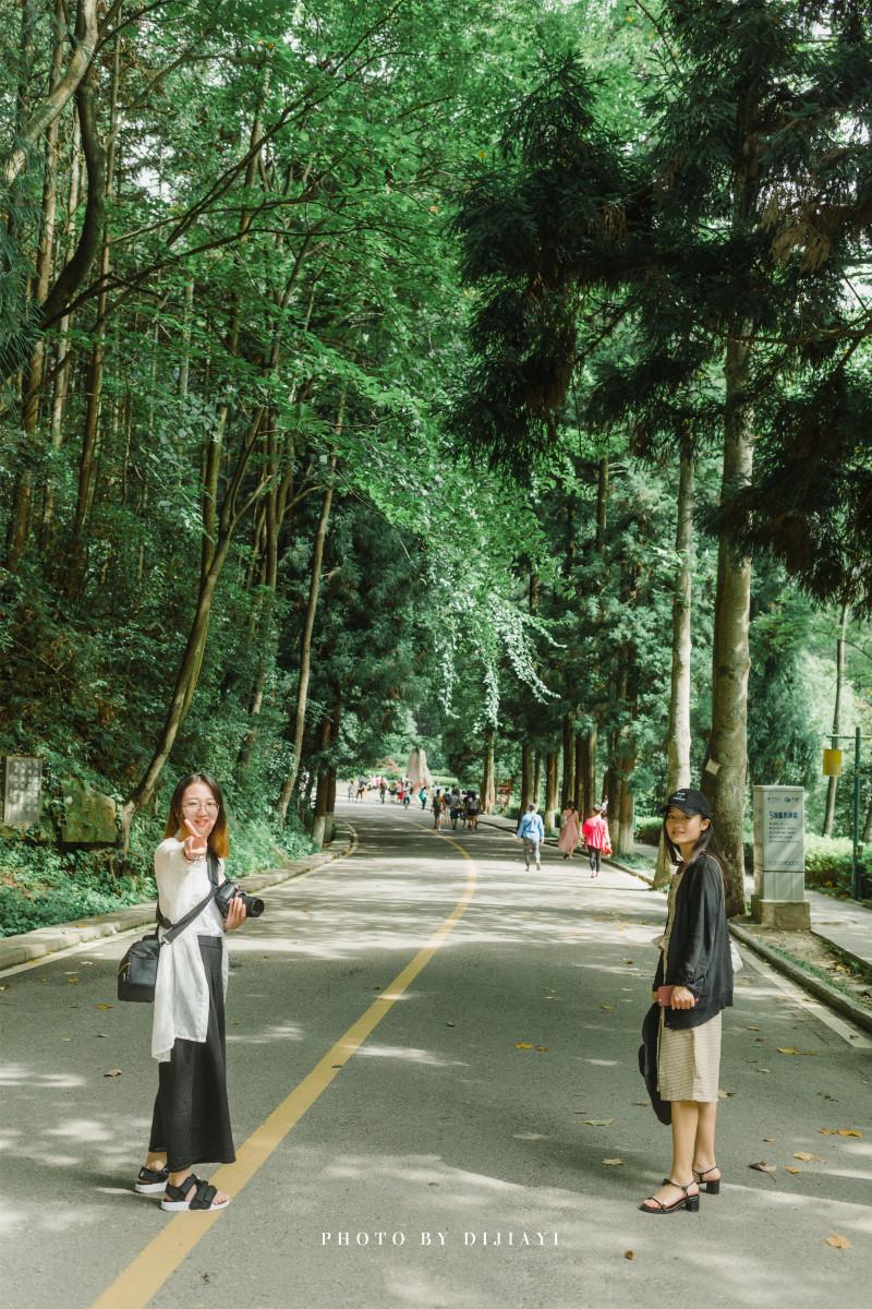 北京到张家界旅游