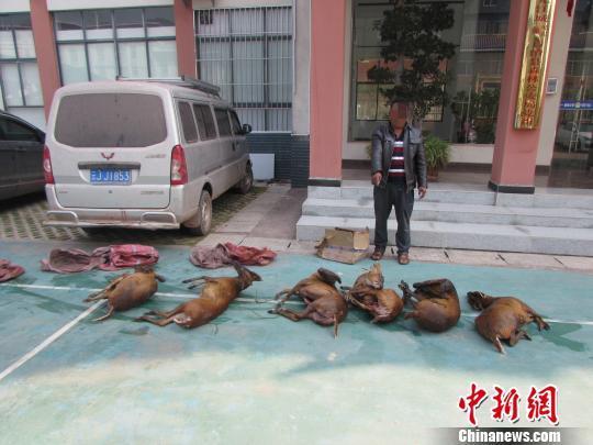 """云南江城查缉边境口岸非法""""山货""""买卖"""