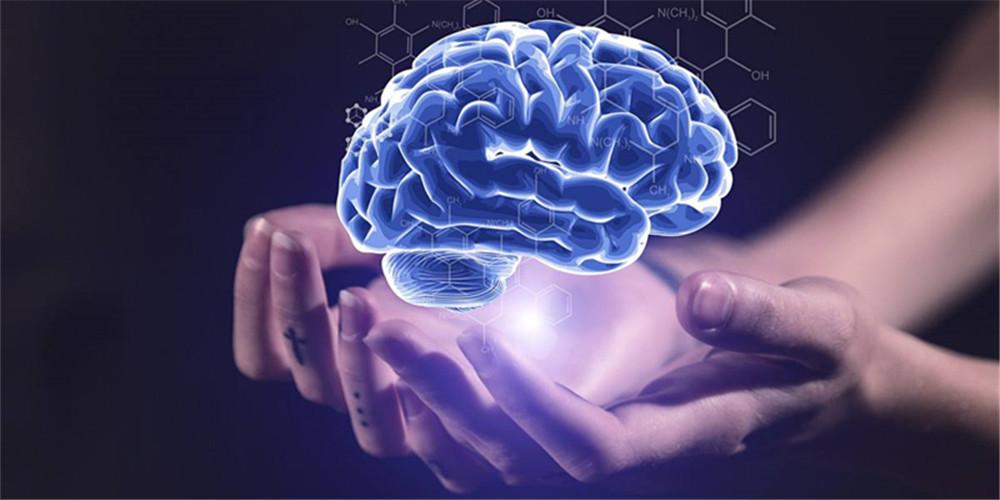 """备份大脑数据让记忆""""死而复生""""?哈佛科学家表示或为骗局"""