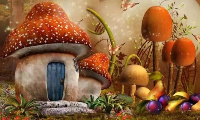 """""""一荤一素一菇""""是最佳膳食结构 - 心诚艺明 - 心诚艺明的博客"""