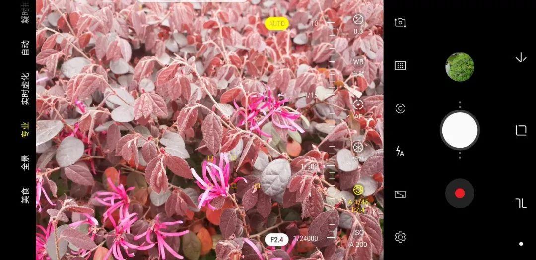 拍照得分104的三星S9有多厉害?我们用iPhone X做了一下对比