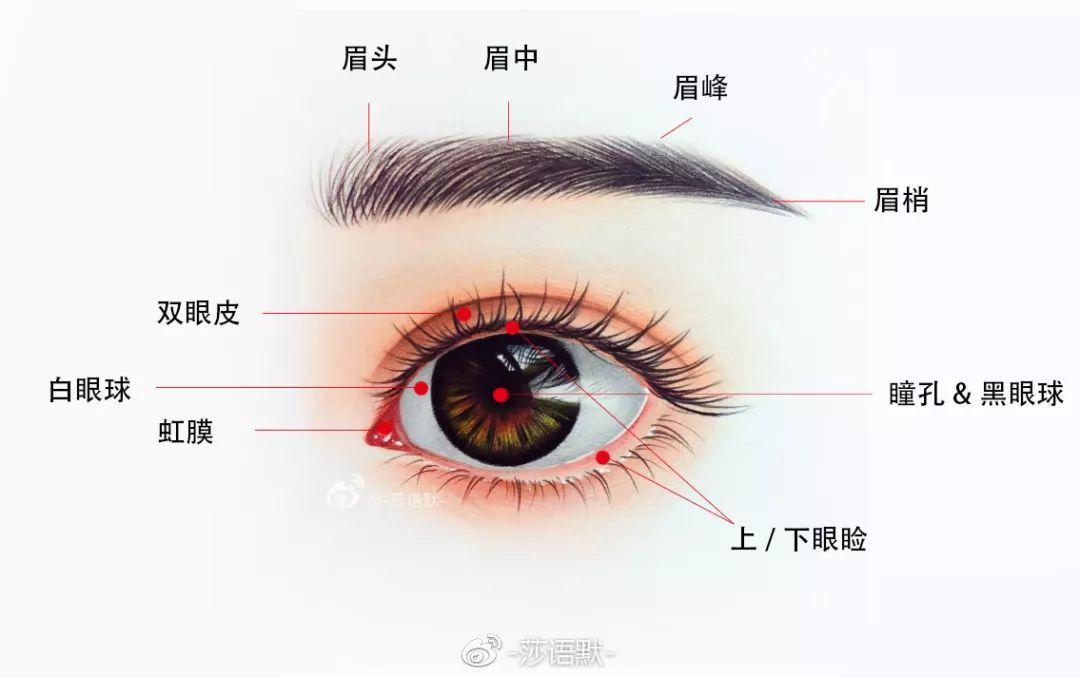 """画一双直击心灵的""""眼睛""""(她画的名流眼睛,你认得出哪几个?)"""