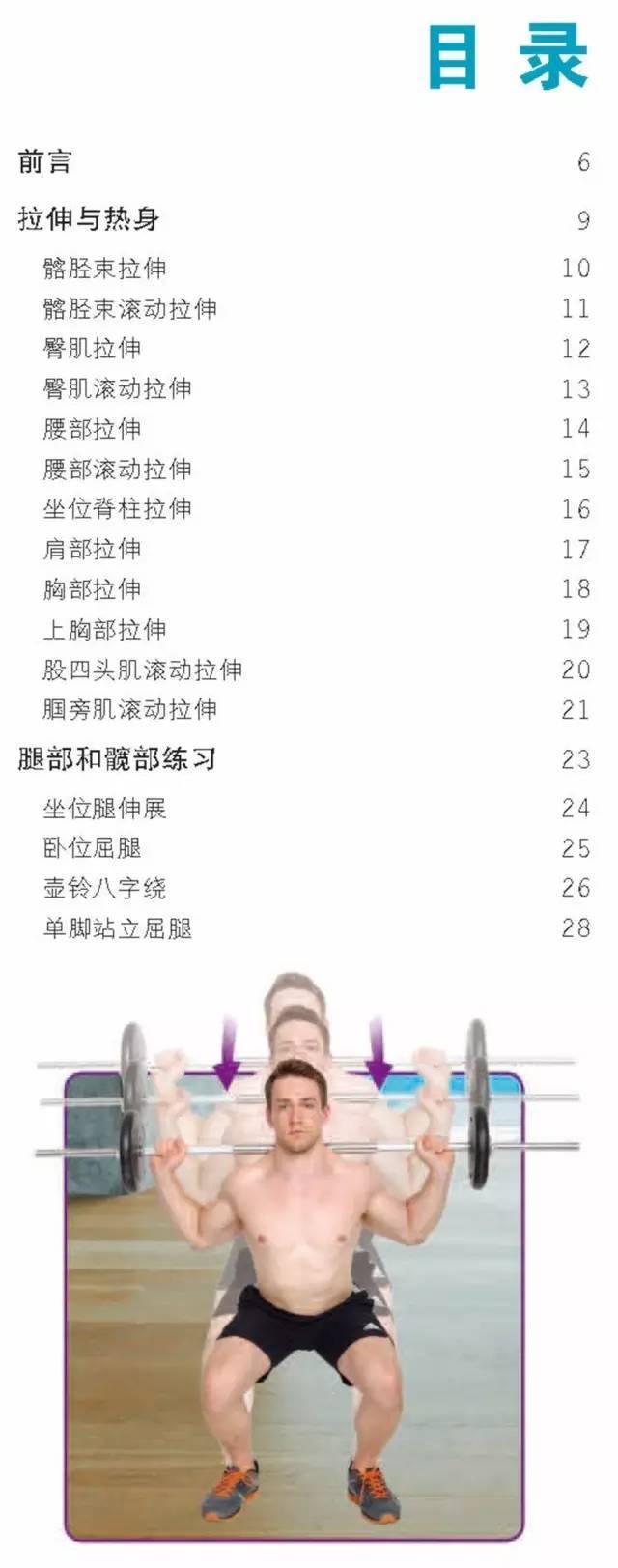 减肥套系:核心锻炼+力量锻炼+瑜伽