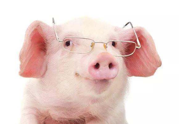 """以色列Shaare Zedek医学中心研发""""纳米眼药水"""":一滴恢复视力!"""