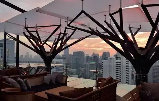 用树的造型撑起一片凉爽的天,遮阳or总结?建筑剖面图绘制避雨图片