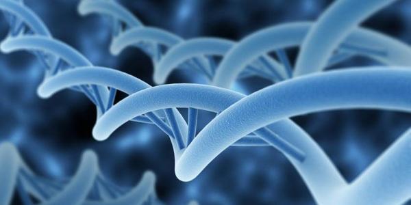 前列腺癌的AI病理诊断:准确率超99%