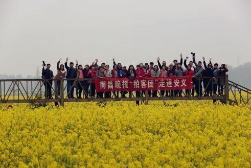 """出发!""""南晚拍客团""""首度集结,开启安义县赏花之旅!"""