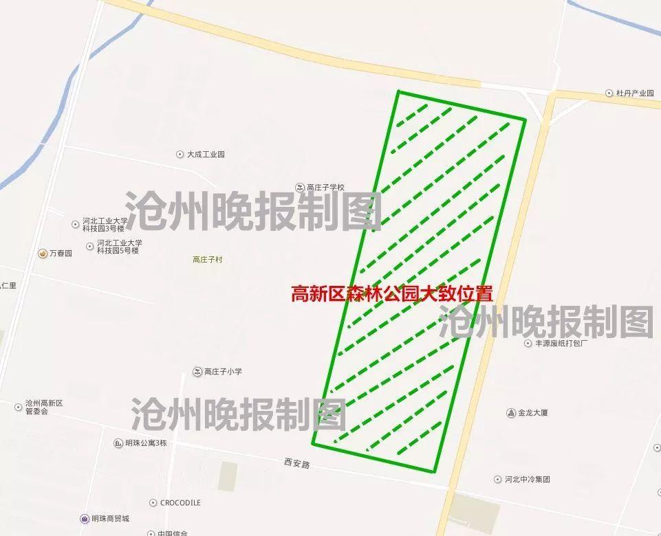 沧州万荣森林公园规划_市区这个森林公园计划7月开园!│沧州这家创业孵化中心为企业 ...