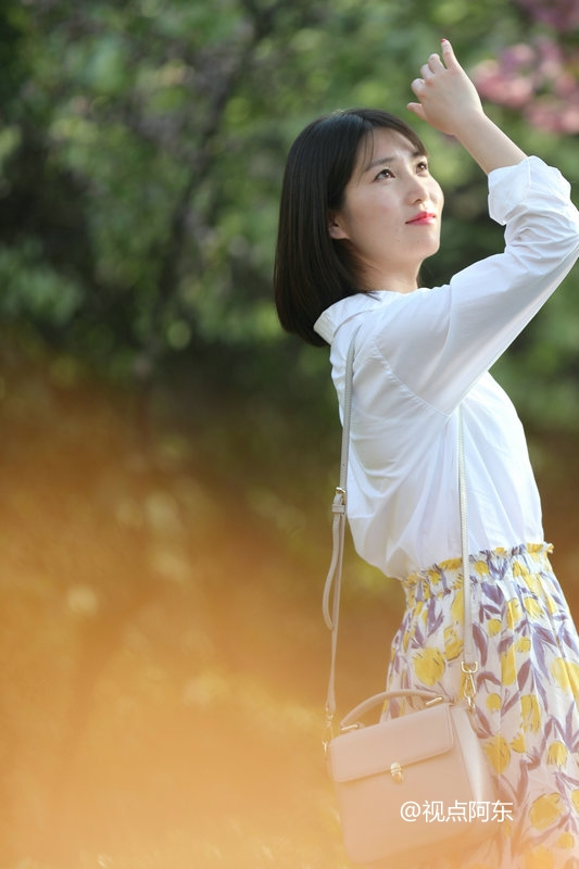 樱花之恋:那令人迷醉的美人美景 - 视点阿东 - 视点阿东