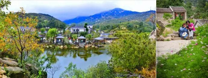 金沙国际娱乐场网址:天蒙山首届梦幻花海节即将与你相约这个春天!