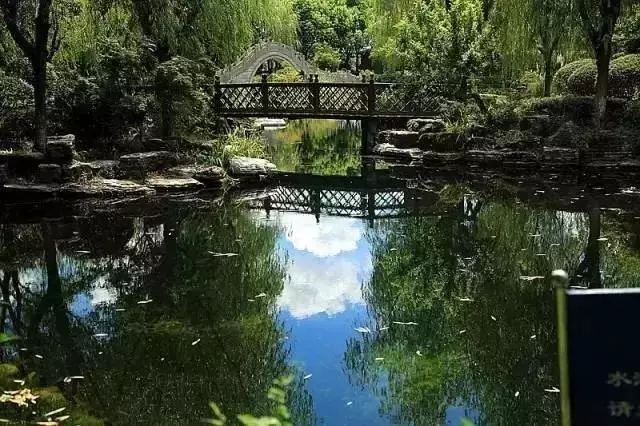 上海人竟然都涌向松江!最美的春天都被这里承包了!