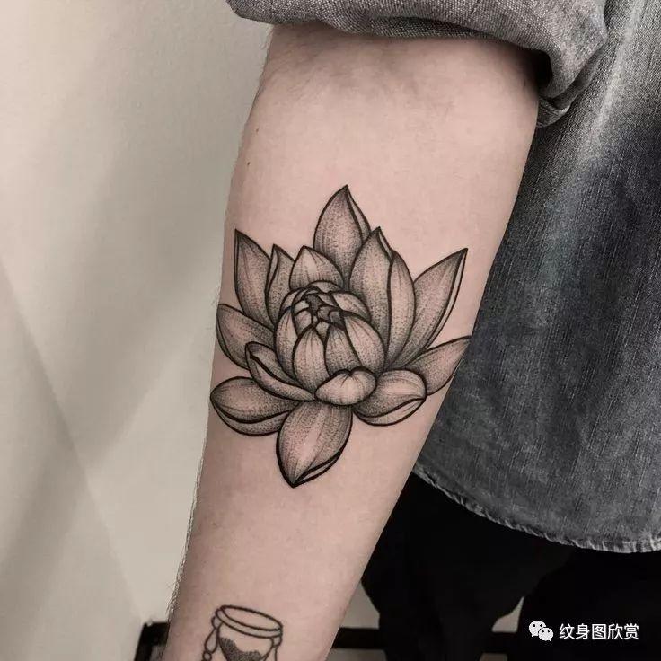 花纹身 - 【荷花】纹身图案