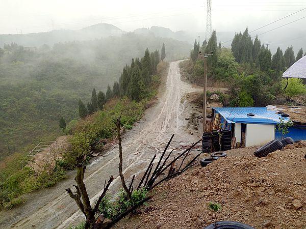 """重庆涪陵:谭凌在山林里养鸡养出""""金凤凰"""""""