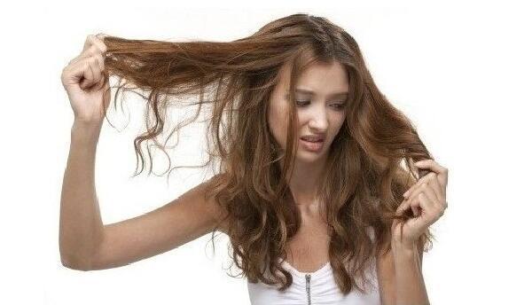 头发分叉如何护理图片
