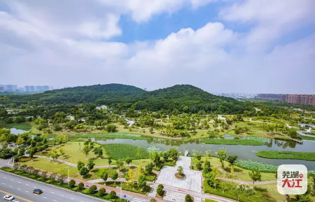 芜湖城中央最美的公园:神山公园
