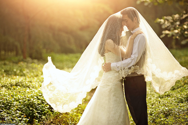 婚纱排行_婚纱图片唯美