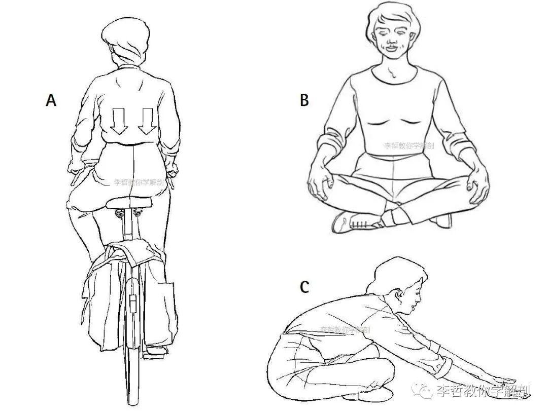 产后腰背痛,从这几个动作开始打卡 - 大山深处 - 大山深处的博客