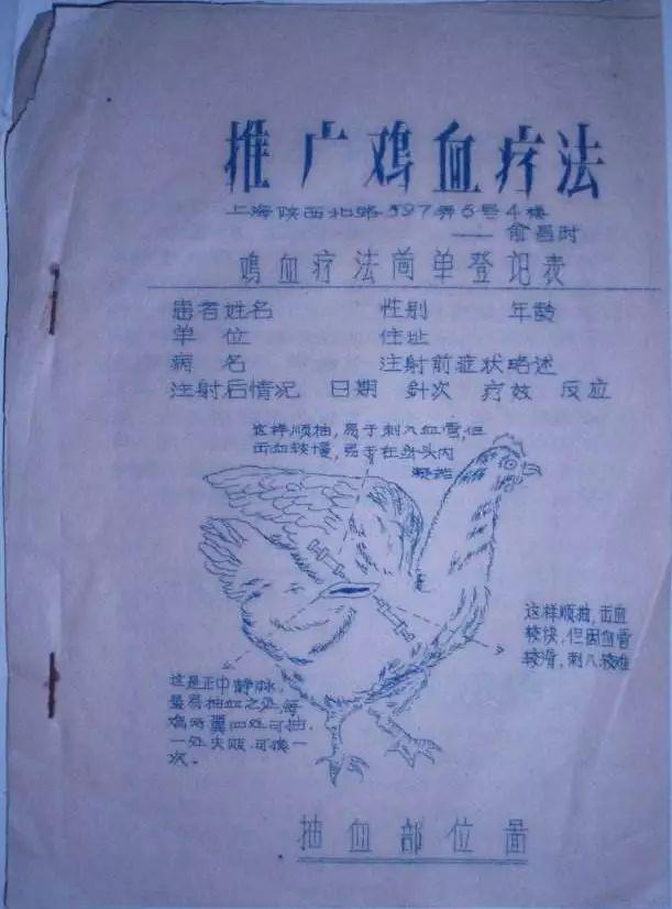 中国保健教父的打鸡血王朝,注射的不只是狂热,还有愚昧