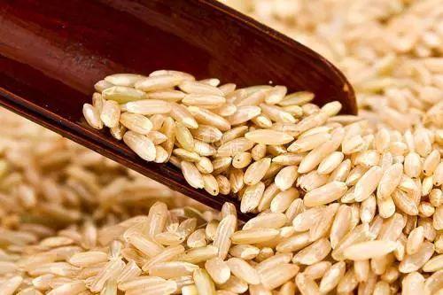 减肥吃大米饭还是面条图片