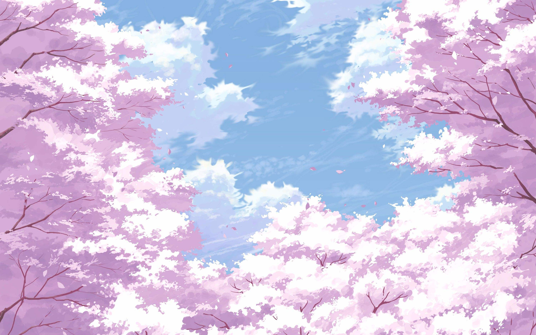 斗罗大陆动画免费观看樱花视频