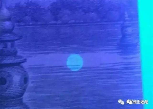 991月亮荧光币系西贝货