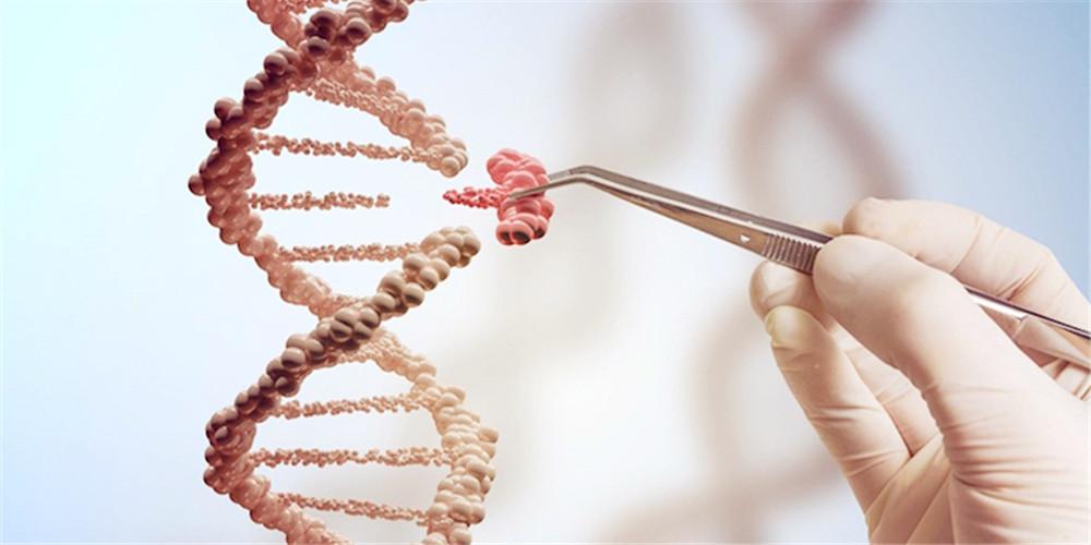 人类基因组好比时光穿梭机,可推知疾病演化的奥秘