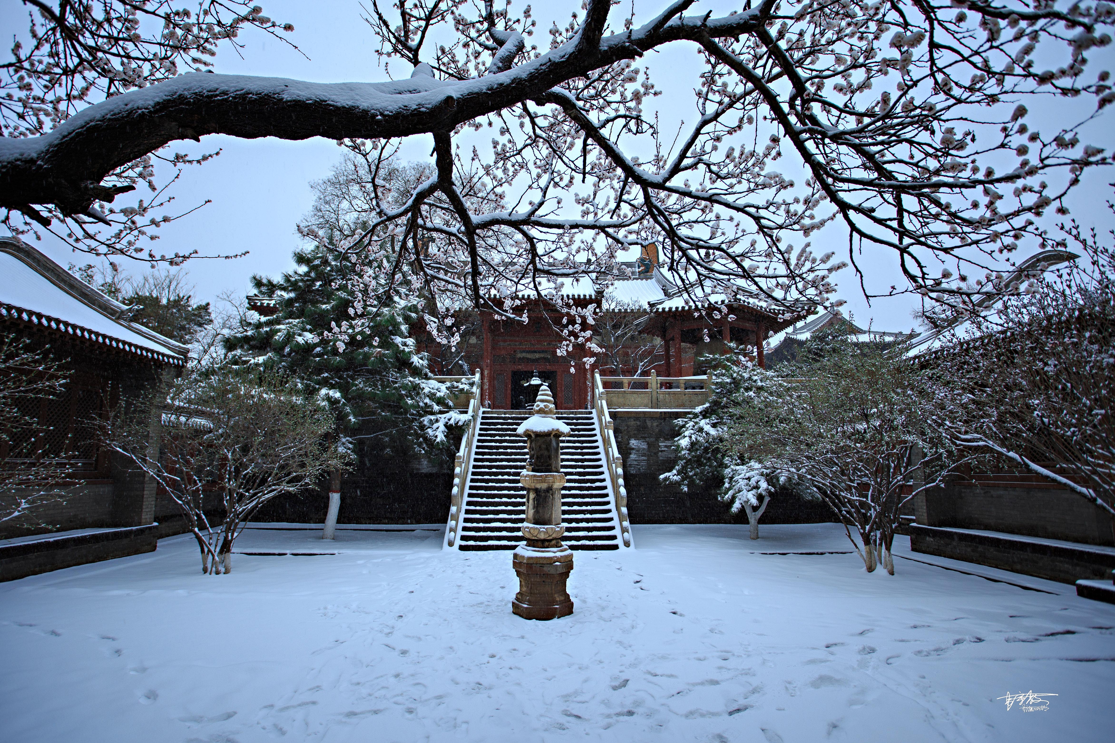 媲美京都雪景,四月飞雪的华严寺空灵幽深