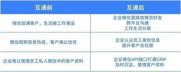 青岛网络公司