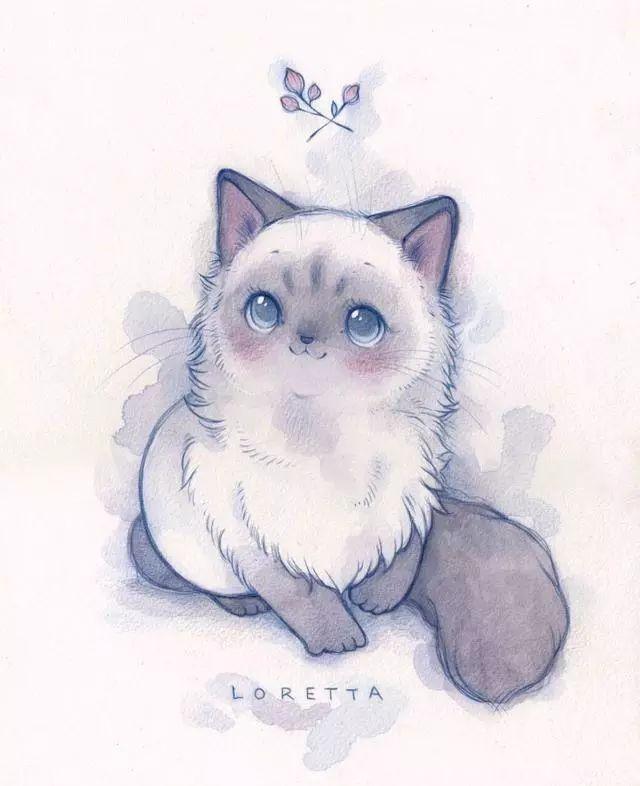可爱彩铅_手绘毛茸茸可爱的小动物,有没有萌到你~