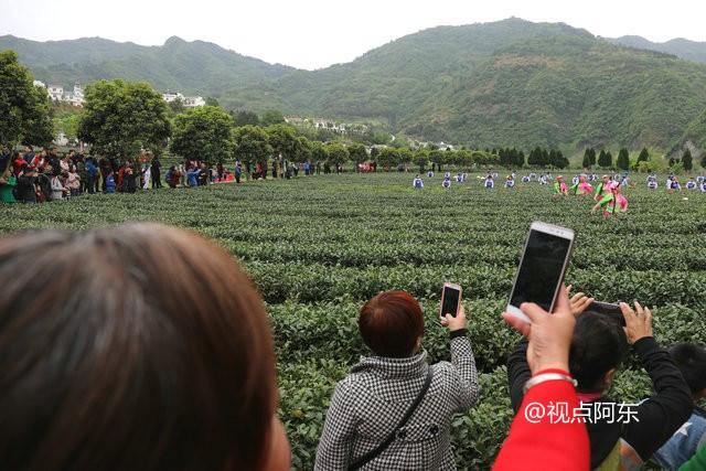 2018平利茶之旅文化旅游节开幕  茶乡情韵实景演出很火爆 - 视点阿东 - 视点阿东