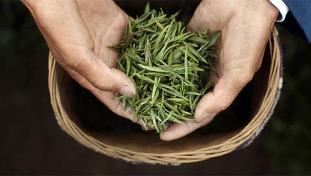 绿茶的9大保健功效