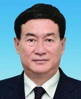 杨崇勇简历