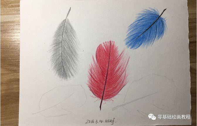 零基础绘画教程-彩铅《五彩羽毛》