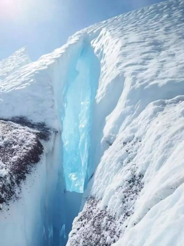 可能是史上最好的阿拉斯加看北极熊攻略,有些熊一旦错过就不在。