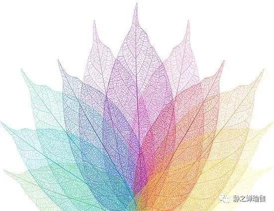 bikram高温瑜伽体式之鹰式图片