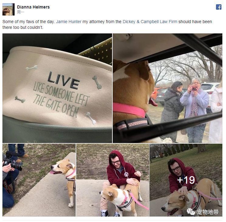 因咬傷貓咪被判「入獄」兩年的狗狗  近日終於「沉冤得雪」