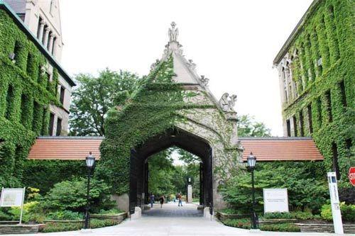 风向标:芝加哥大学宣布终止本科开设商科