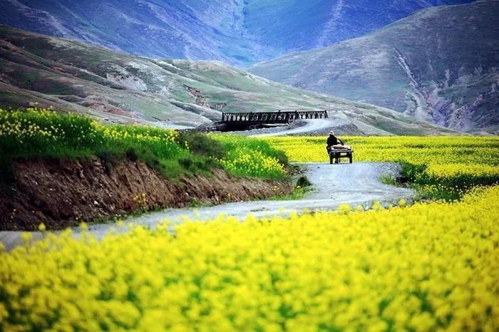 70岁前必驾的中国最美公路!都走遍,才不枉此生!