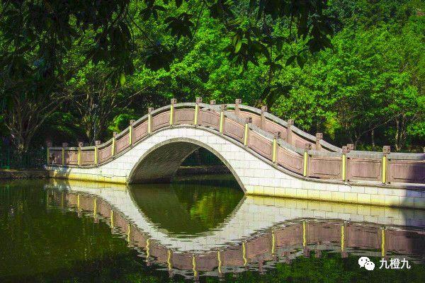 拱桥的原理的例子_倒拱桥原理简单的图解