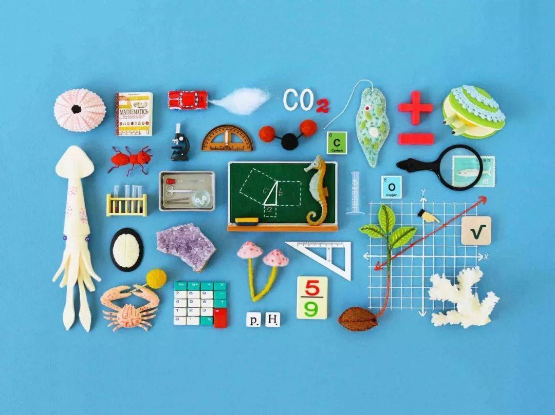 不把数学赶下神坛,再怎么禁奥减负孩子依然讨厌数学!