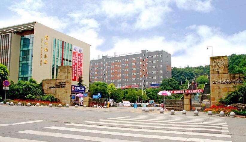 四川文化艺术学院是全国唯一一所图片