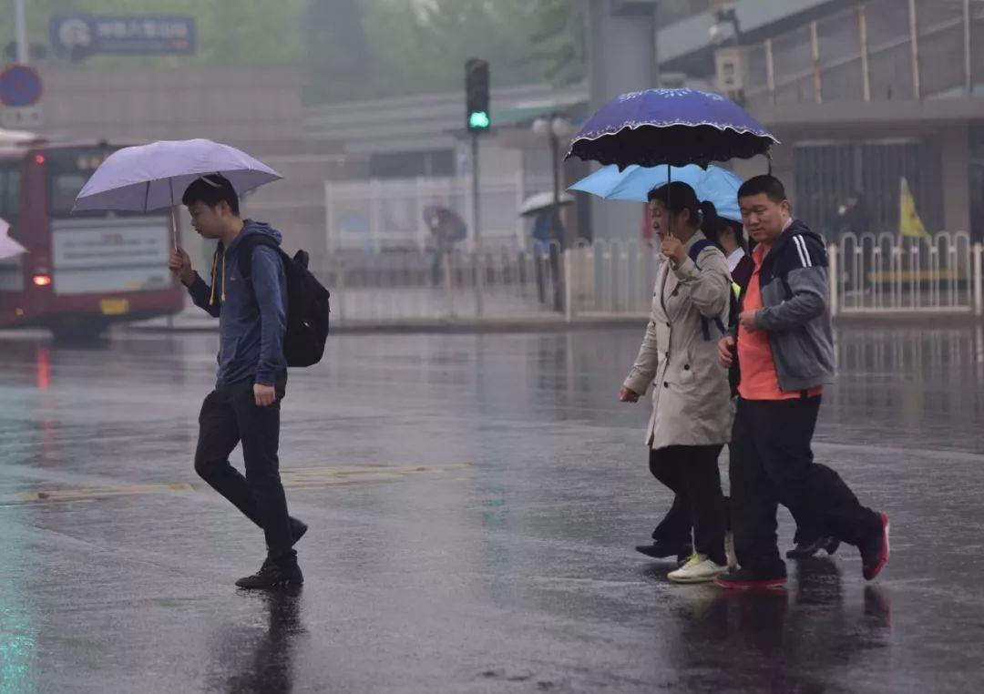 暴雨预警+降温!北京下午有中雨!这个周末,宜:宅
