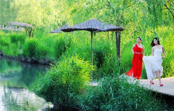 洽川旅游之 -洽川湿地 黄河最美的馈赠
