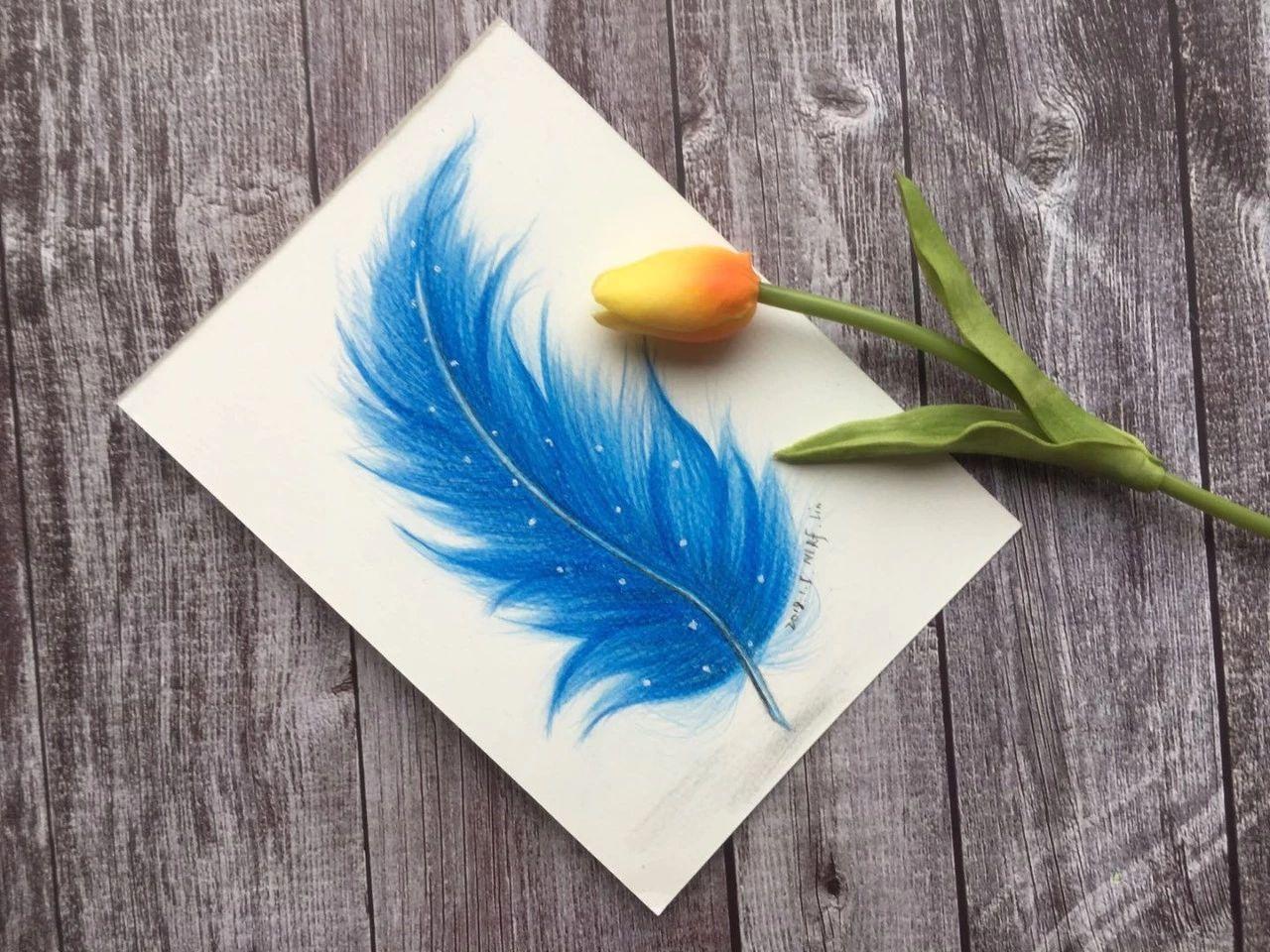 零基础绘画教程-彩铅《蓝色羽毛》